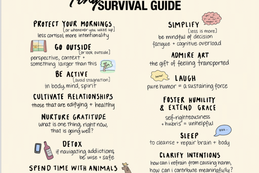 Tiny Trauma Guide